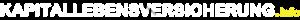 Logo von Kapitallebensversicherung.info